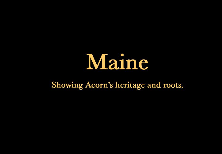 acorn_maine4